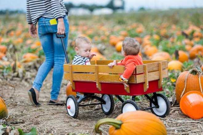 two little boys in a red wagon with wooden sides in a new jersey pumpkin patch being pulled by hteir mom in blue jeans going pumpkin picking in new jersey