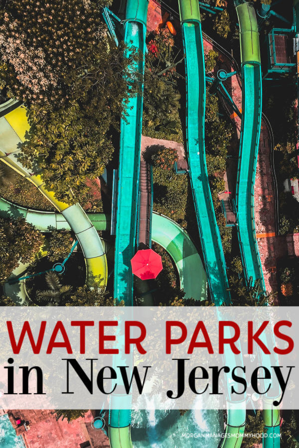 a photo of brightly colored slides at a water park in NJ  with trees all around