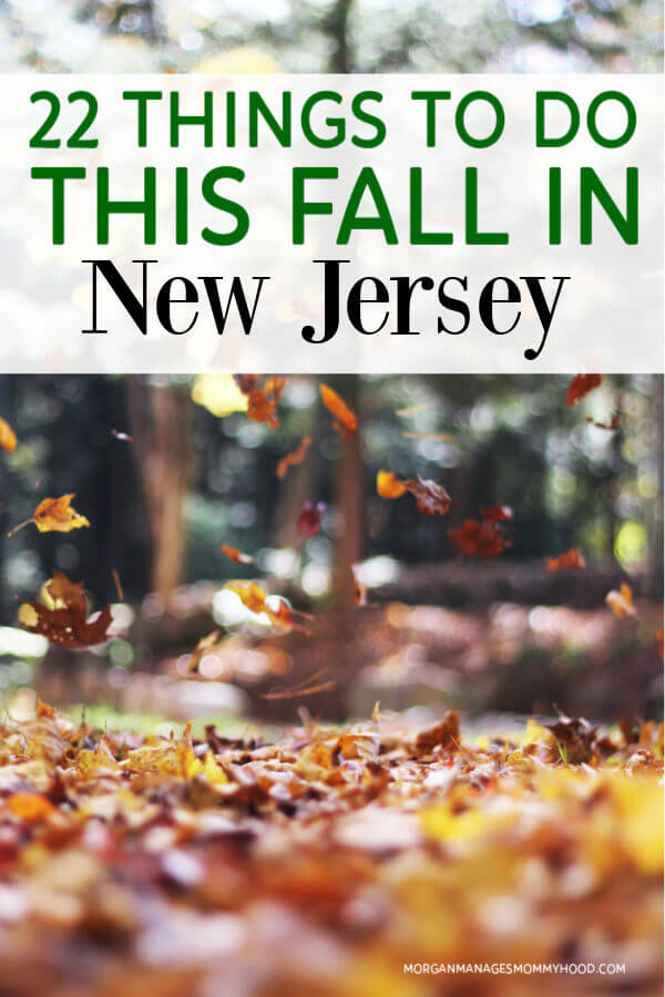 a photo of leaved falling with text overlay readin 22 things to do this fall in new jersey