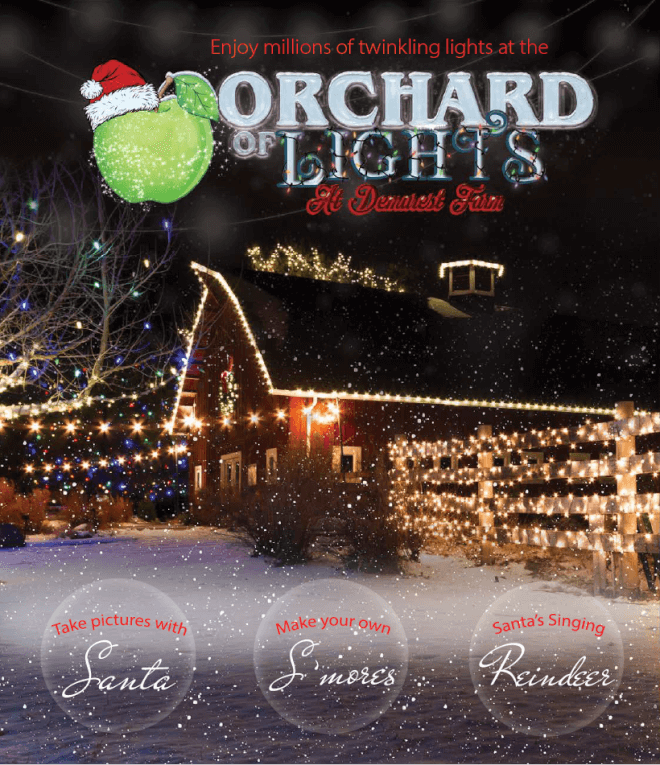 Where to See the Best Holiday Lights in NJ   NJ With Kids